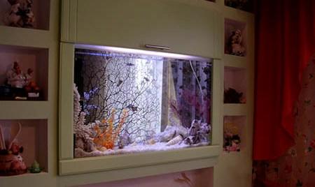 ниша с аквариумом