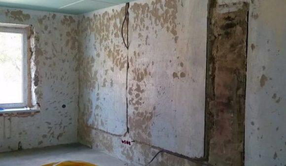 стена гипсокартон
